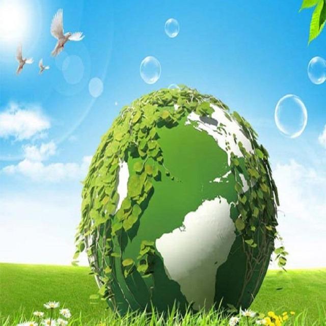 环保验收检测